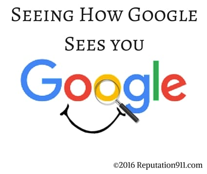Seeing How Google Sees You